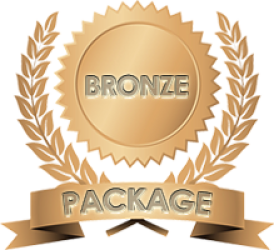 Bronze Content Writing pages medal
